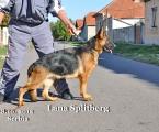 lana-splitberg-8-septembrie-serbia-009