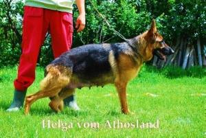 helga-vom-athosland