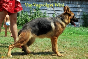 vac-va1_0