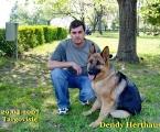 Dendy Herthaus