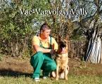 vally-2012